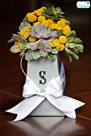 Blumebox.jpg