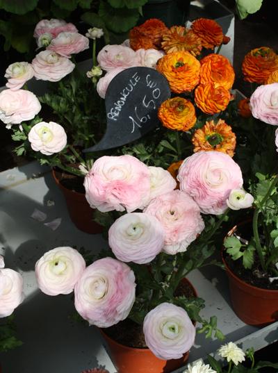 flower shops of paris
