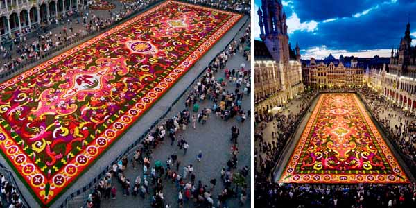 Europe flower carpet