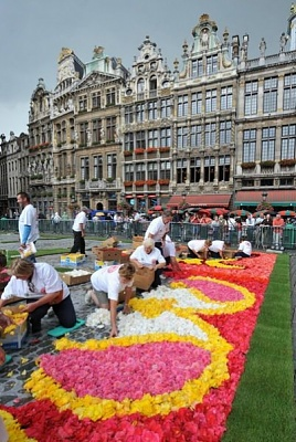 making of the flower carpet