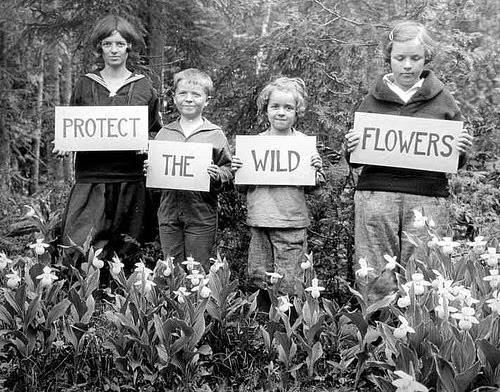 Save The Wild Flowers Vintage