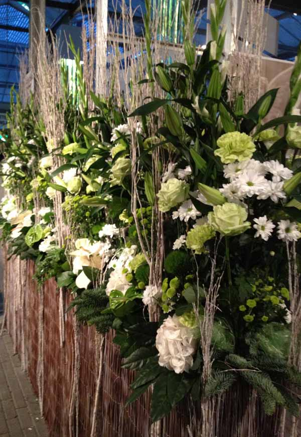 hedge of white flowers arrangement