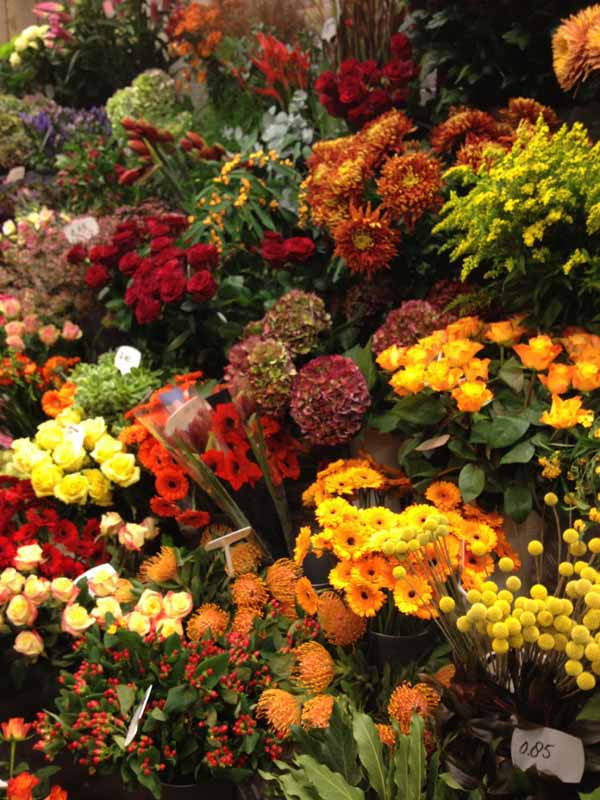 display of flower shop