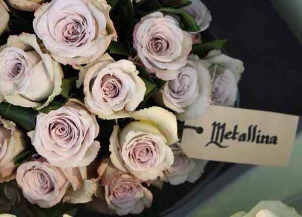 Metallina Roses