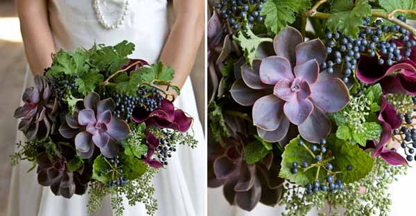 purple succulents, privet berries and callas